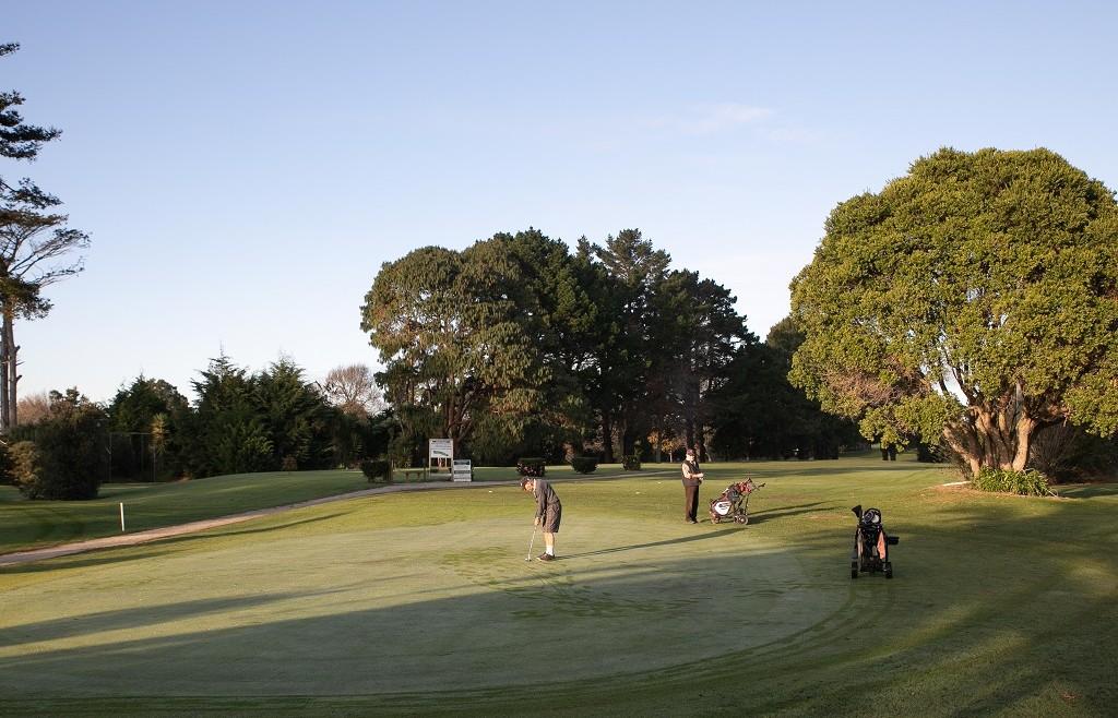 Business House Golf